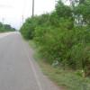 Carretera San Juan-Las Matas de Farfan